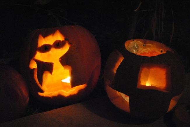 Pumpkin_Cat&Square