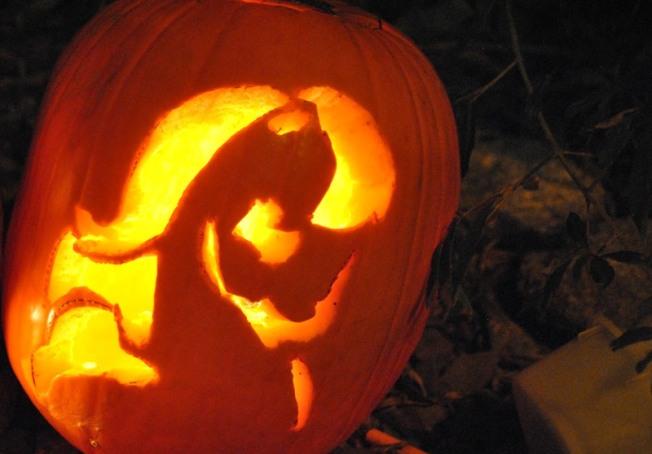 Pumpkin_Pony2