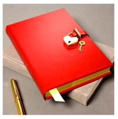 DIARY_Red